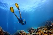 Underwater shoot of a young lady snorkeling and diving on a breath hold over vivid coral reef of tro