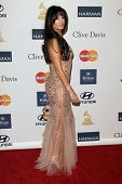 LOS ANGELES - FEB 9:  Bleona arrives at the Clive Davis 2013 Pre-GRAMMY Gala at the Beverly Hilton H