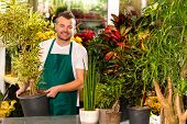 Male shop assistant potted plant flower working smiling