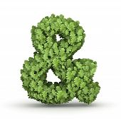 Ampersand from green leaves