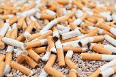 Fallen Cigarettes Chaos