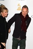 LOS ANGELES - FEB 9:  Trudie Styler, Sting arrives at the Clive Davis 2013 Pre-GRAMMY Gala at the Be