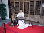 Young Woman Playing On Traditional Chinese Zither
