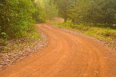 Road Natural.