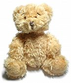 stock photo of teddy-bear  - close up of teddy bear - JPG
