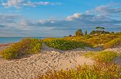 Caspersen Beach In Venice Florida