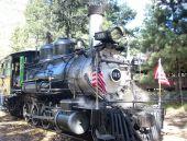 Historic 315 Steam Train