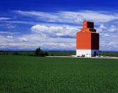 Orange Grain Elevator In Green Fields