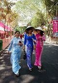 Vietnamese Woman In Traditional Dress, Conical Hat, Ao Dai