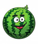 Happy cartoon green watermelon fruit