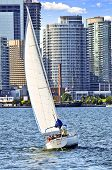 Sailboat sailing in Toronto harbour with downtown view