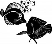 image of butterfly fish  - sea butterfly fish swimming aquarium wildlife saltwater - JPG