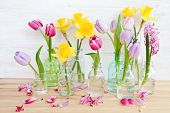 Colorful Flowers In Little Bottles