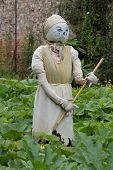 stock photo of cinderella  - A Cinderella Themed Scarecrow in a Garden Setting - JPG