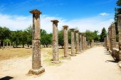 Theokoleon Ruins In Ancient Olympia, Peloponnes, Greece
