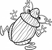 Shield Bug Insect Coloring Page