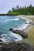 foto of pacific rim  - Rocky shore of  Pacific Rim National park - JPG