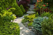 image of planters  - Natural flagstone path landscaping in home garden - JPG