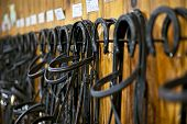 stock photo of bridle  - Leather horse bridles and bits hanging on wall of stable - JPG