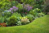 stock photo of horticulture  - Lush landscaped garden with flowerbed and colorful plants - JPG