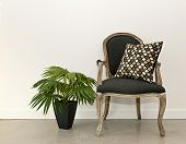 Antique armchair furniture with houseplant against white wall, interior design concept