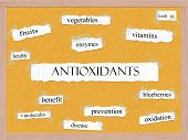 Antioxidants Corkboard Word Concept