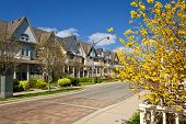 stock photo of row trees  - Row of houses on spring street in Toronto Canada - JPG
