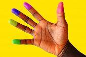 Multi Coloured (cultured) Finger Tips