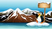 Illustration of a penguin above the iceberg with an empty wooden signboard