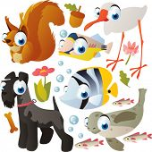 animal set: squirrel, fish, ibis, dog, seal