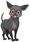 Illustration of a small black dog