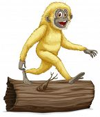 Illustration of a white gibbon on a log