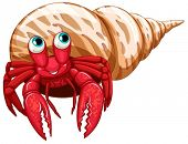 picture of hermit  - Illustration of a single hermit crab - JPG