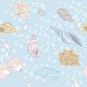 Shelly Bay seamless pattern