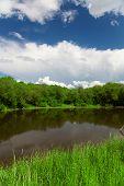 Pond, trees and blue sky