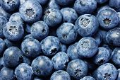 Fresh blueberries background, closeup