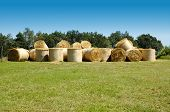 Many straw bales