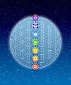stock photo of kundalini  - Illustration of the seven main chakras and flower of live - JPG