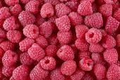 Ripe sweet raspberries close-up