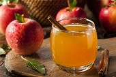 Organic Apple Cider With Cinnamon