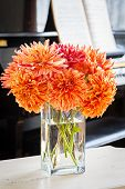 Cheerful bouquet of garden dahlias placed in a home interior.