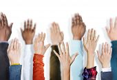 Multiethnic Group of Hands Raised