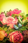 Pink Roses. Fresh Flowers. Retro Style Toned Picture