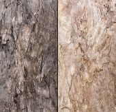 Abstract Natural Stone Background