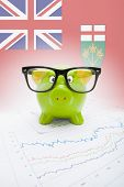 Piggy Bank With Canadian Province Flag On Background - Ontario