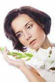 stock photo of gladiolus  - Close - JPG