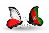 Two Butterflies With Flags On Wings As Symbol Of Relations Poland And Afghanistan