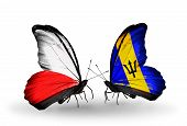 Two Butterflies With Flags On Wings As Symbol Of Relations Poland And Barbados