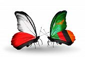 Two Butterflies With Flags On Wings As Symbol Of Relations Poland And Zambia