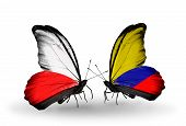 Two Butterflies With Flags On Wings As Symbol Of Relations Poland And Columbia